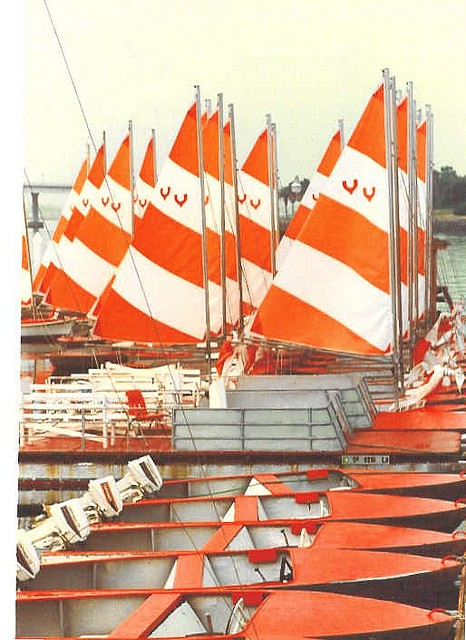 tangerine sailboats.jpg