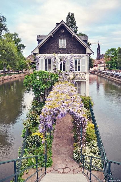 strasbourg garden.jpg