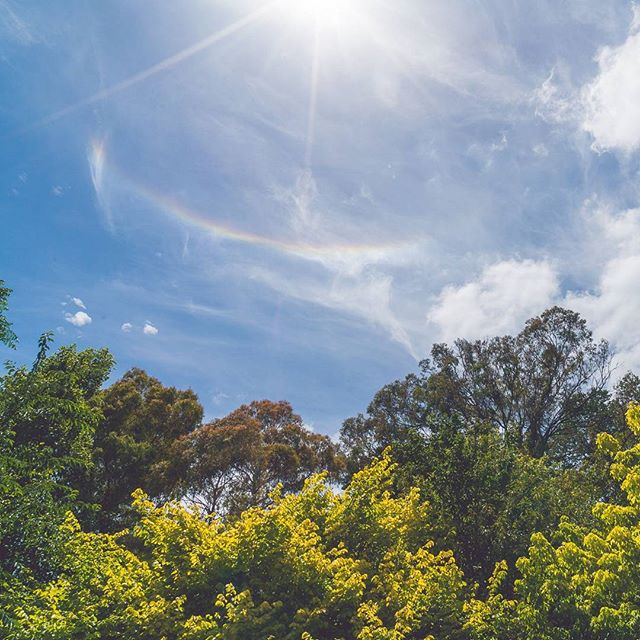 When the sky offers wedding day congratulations by way of rainbows around the sun!  ___  These atmospheric optics were captured not looking after Alison & Ethan made vows & official became Mr. & Mrs. ___  #weddingdaymagic #weddingdayblessings #atmosphericoptics #sunrainbow