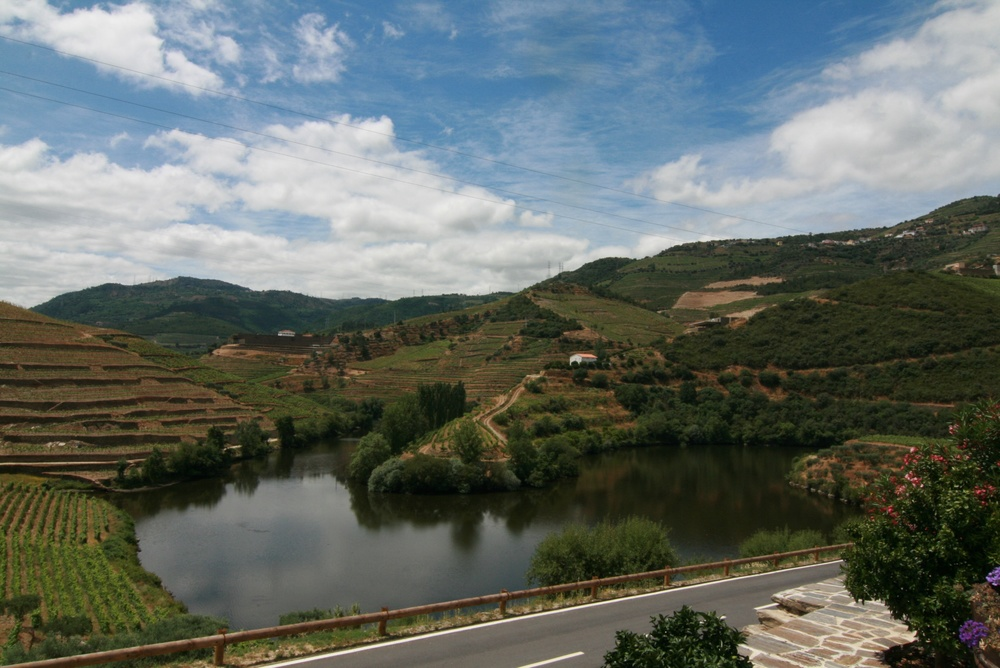 The view from Quinta do Tedo