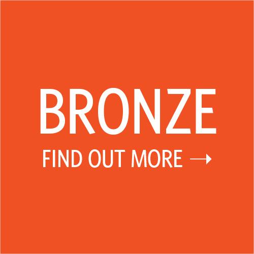 bronze_findoutmore.jpg