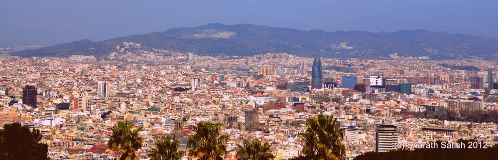 A view of about half of Barcelona from the top of Montjuic