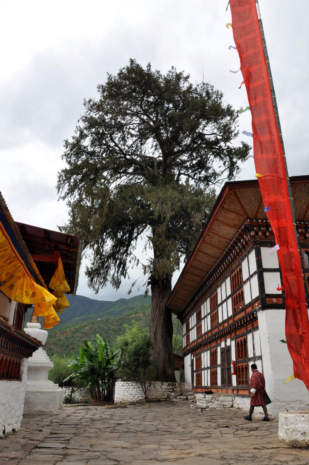 Kyichu Lhakhang, Paro
