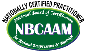 NBCAAMLogo4_NCP_175.png