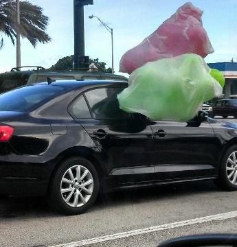 8-24-balloons-jpg.jpg