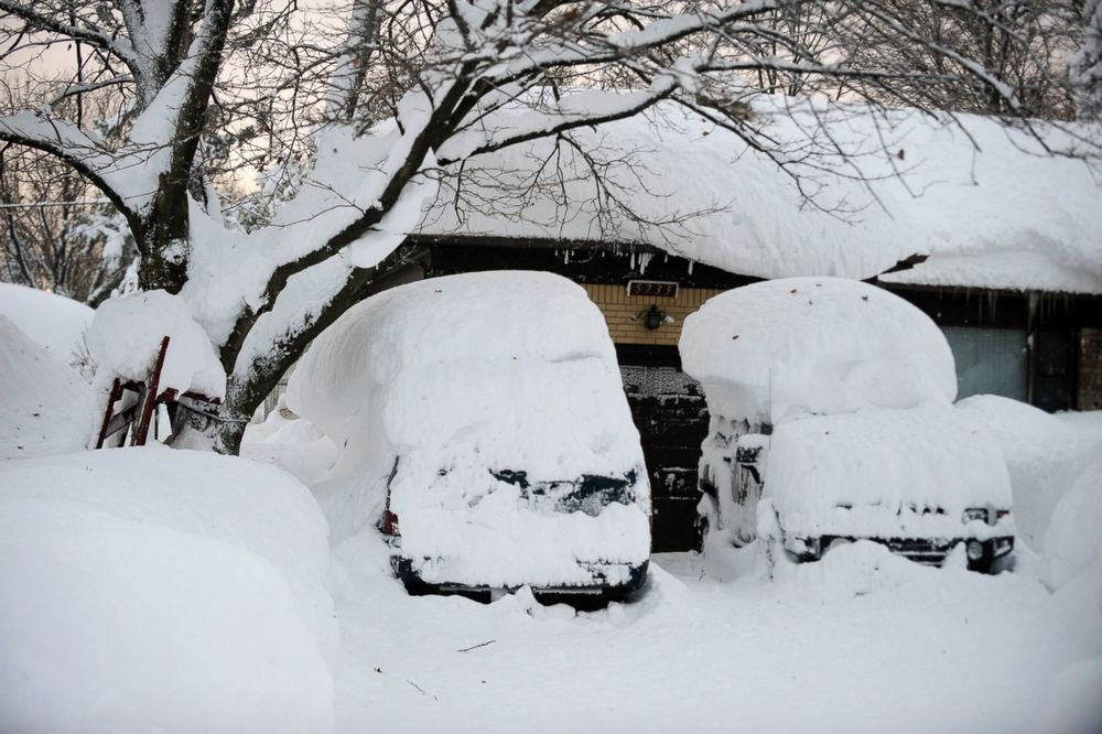 ap_buffalo_winter_snow_3_wy_141119_3x2_1600.jpg