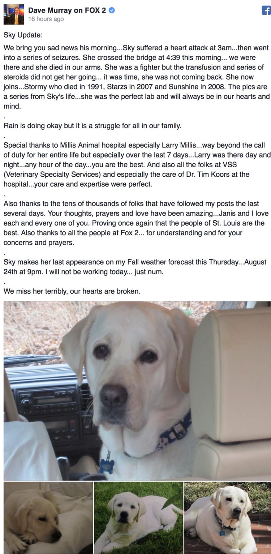 weatherman s dog dies in his arms ftvlive