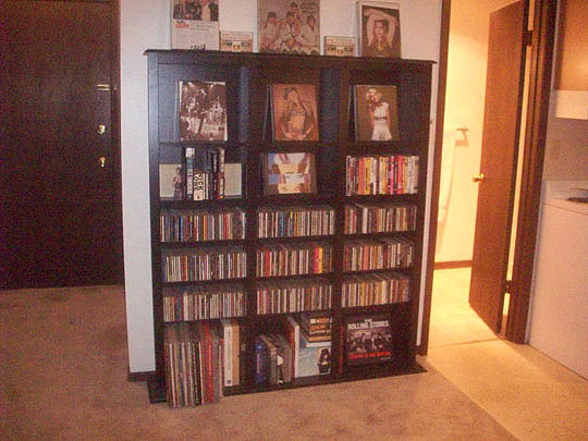 15. onemorebigbookcase_dec13.jpg