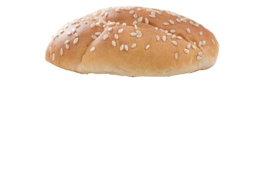 1. cheeseburger1.jpg