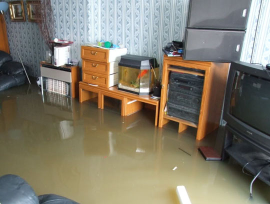 10. flooded1.jpg