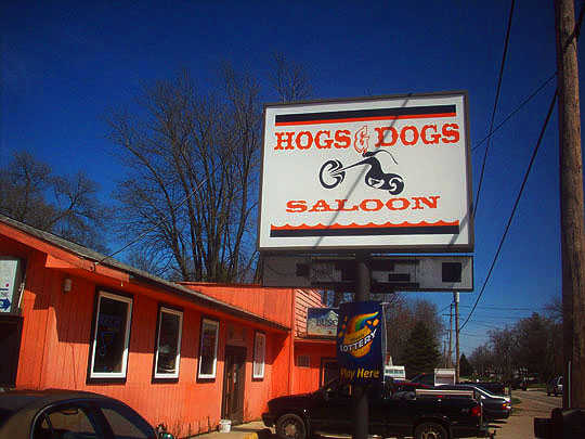 9. hogsanddogs_april16.jpg