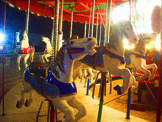15. fair_July13.jpg