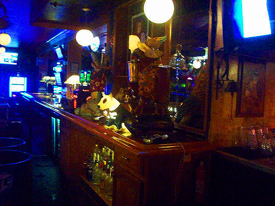 9. behindthebar_july19.jpg