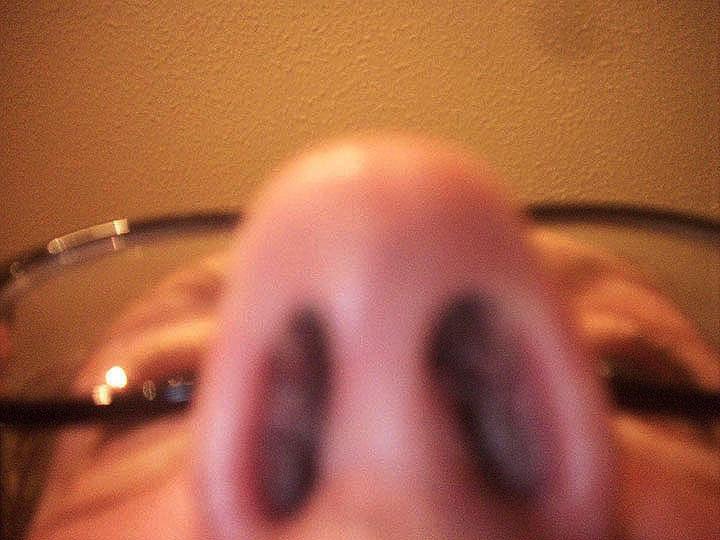 4. nose_aug14.jpg