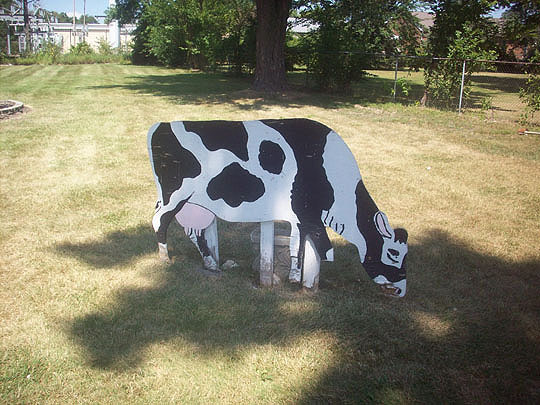 10. woodencows_aug20.jpg