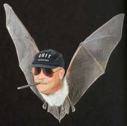 jaws_bat_logo_5_contibs_oct20.jpg