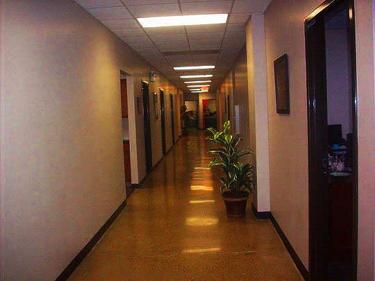 9. downthehall-jan2214.jpg