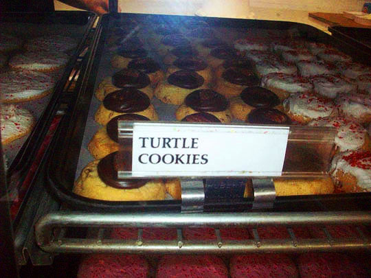 20. turtlecookies-jan614.jpg