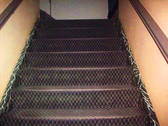 10. steps-march514.jpg