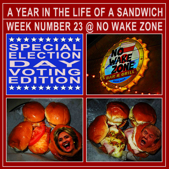 A year in the life of a sandwich week number 23 no wake zone a year in the life of a sandwich week number 23 no wake zone special election day voting edition publicscrutiny Images