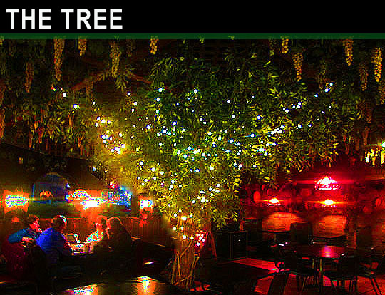 13. treerating_march12-18.jpg