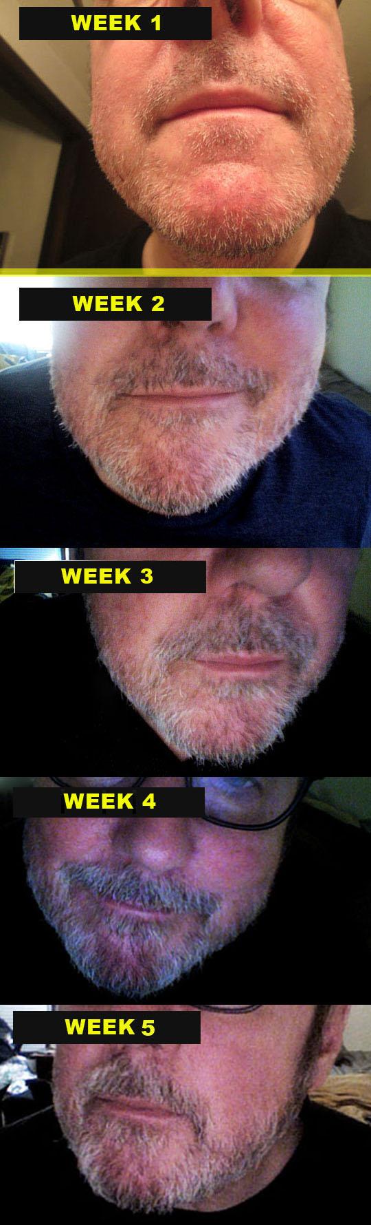 5. weeklygrowth_jan26-19.jpg