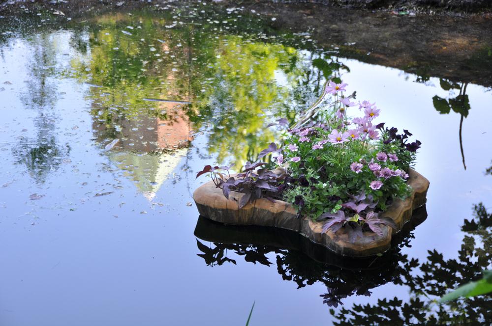 Blomstero.jpg