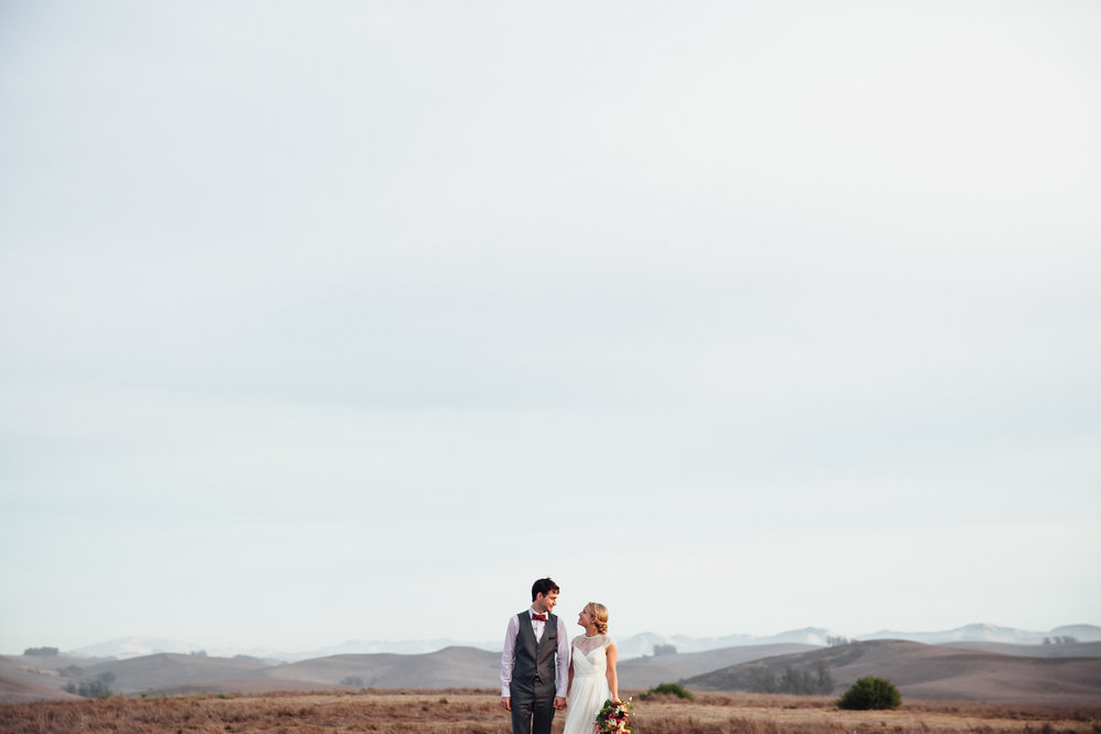 MORGAN & ANDREW, petaluma california