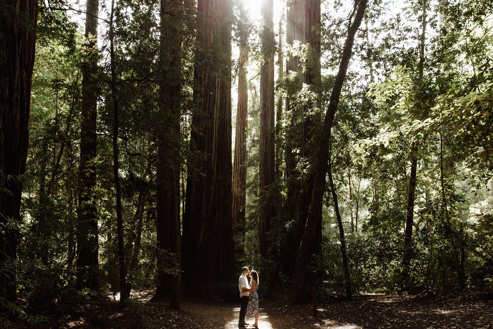 Big Basin Engagement Sesssion
