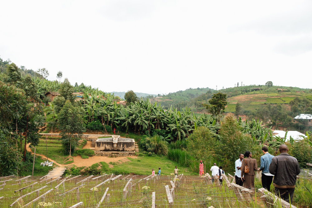 KINYOVU WASHING STATION, burundi