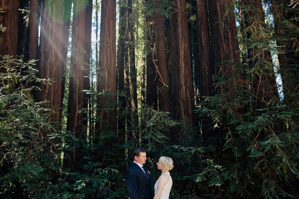 Redwoods Wedding Portrait