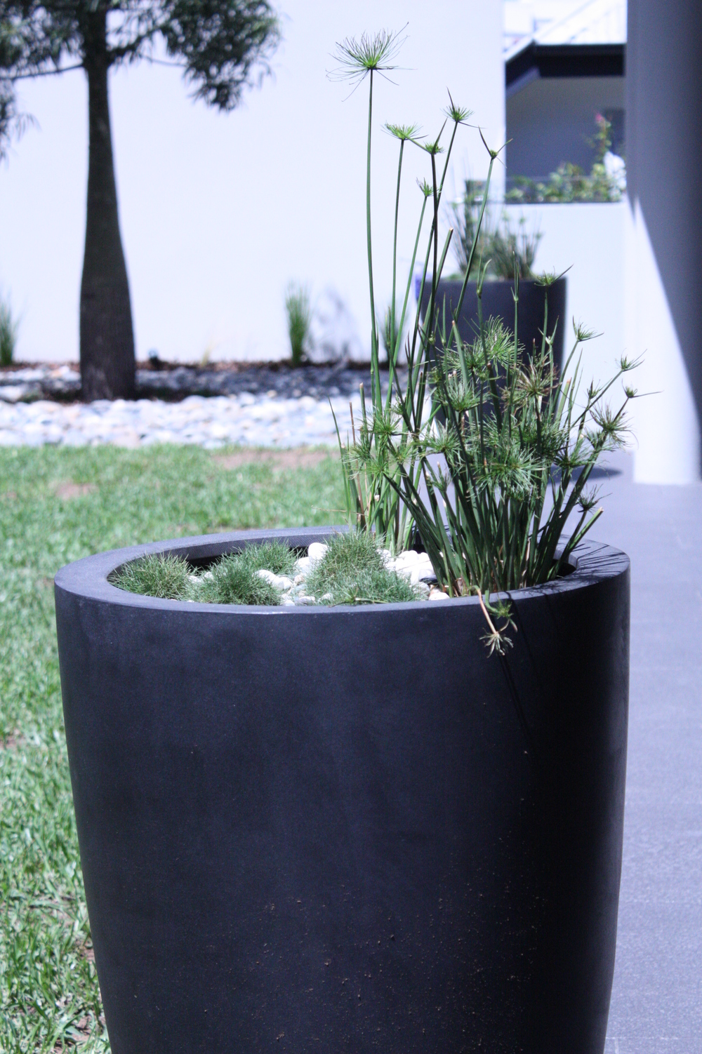 Hamilton-landscape-design-round-planter-SEED.JPG