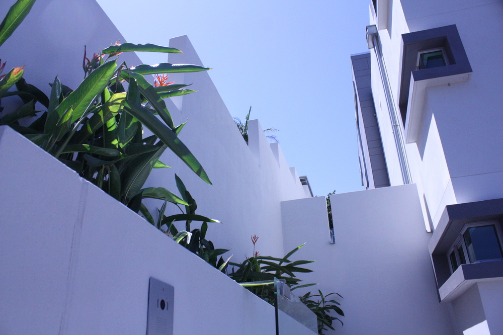 Hamilton-landscape-design-planter-box-SEED6.JPG