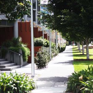 Seed landscape design seed landscape design for Landscape design brisbane