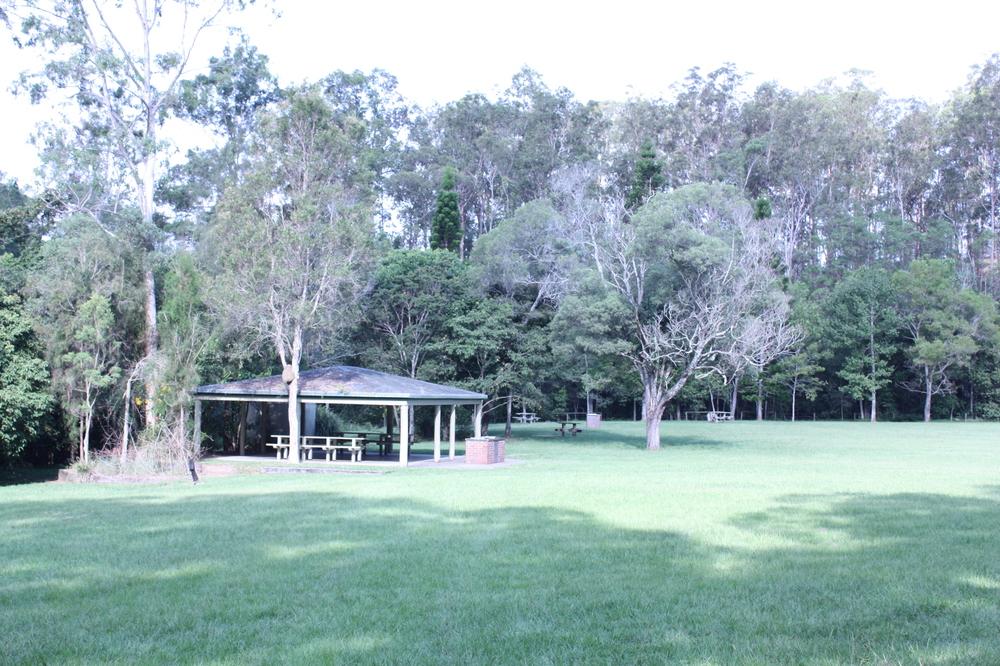 Announcing my favourite park in brisbane seed landscape for Residential landscape design brisbane
