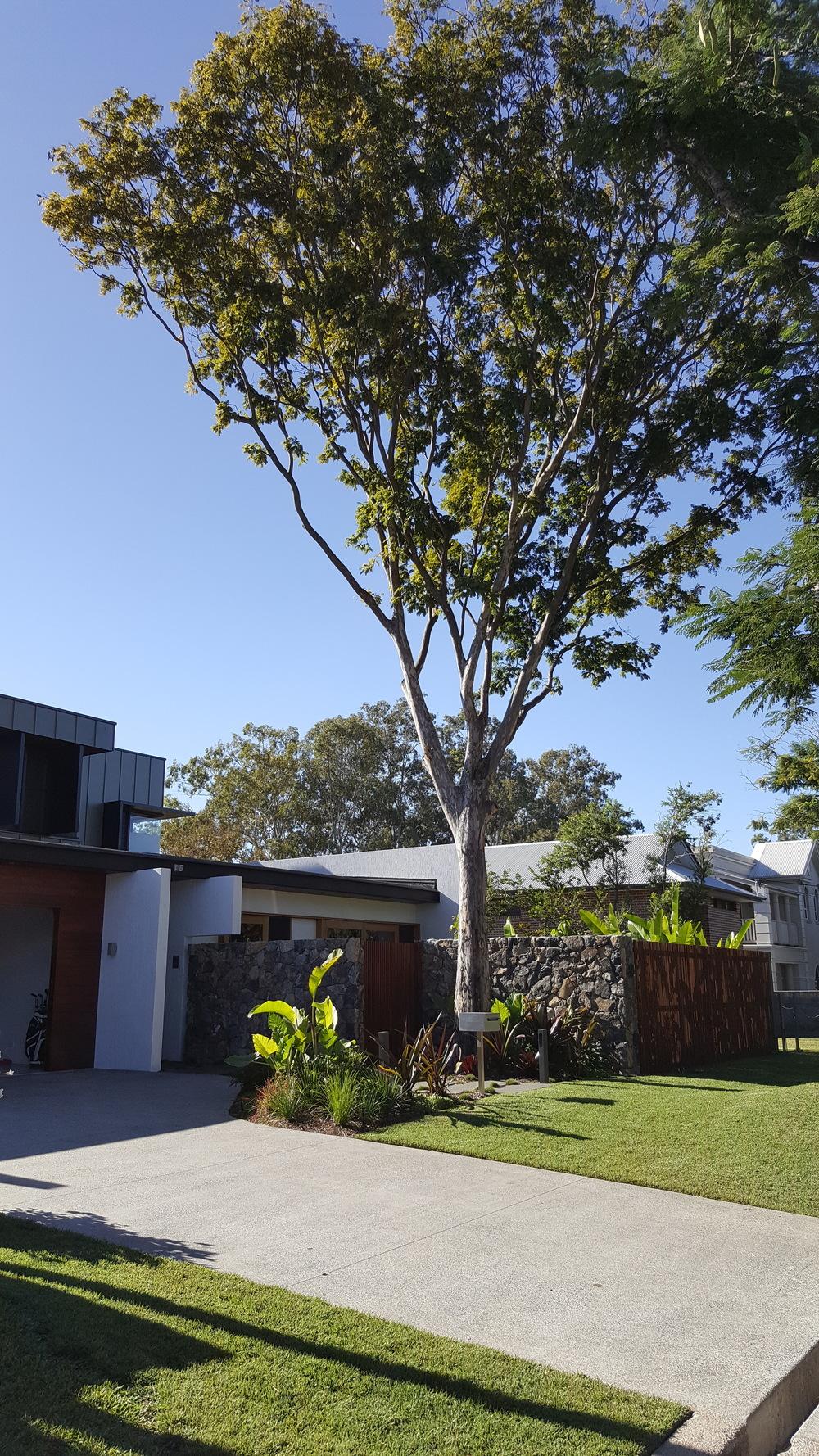 Chelmer, QLD Contemporary landscape design for architecturally designed home on the Brisbane River in Chelmer.