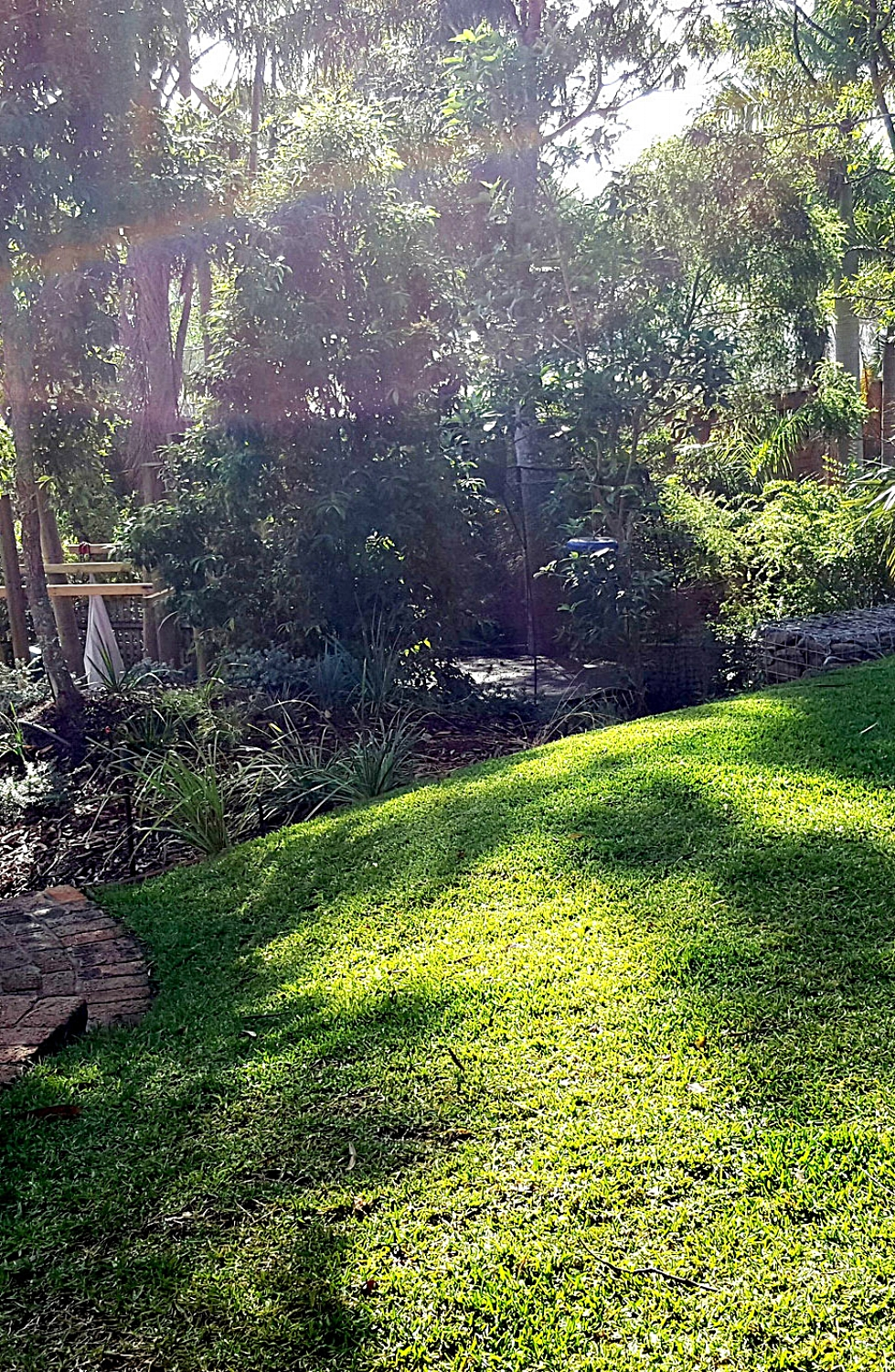 Chapel Hill, QLD Landscape design in bushland setting for a family with 3 boys in Chapel Hill. Read more...
