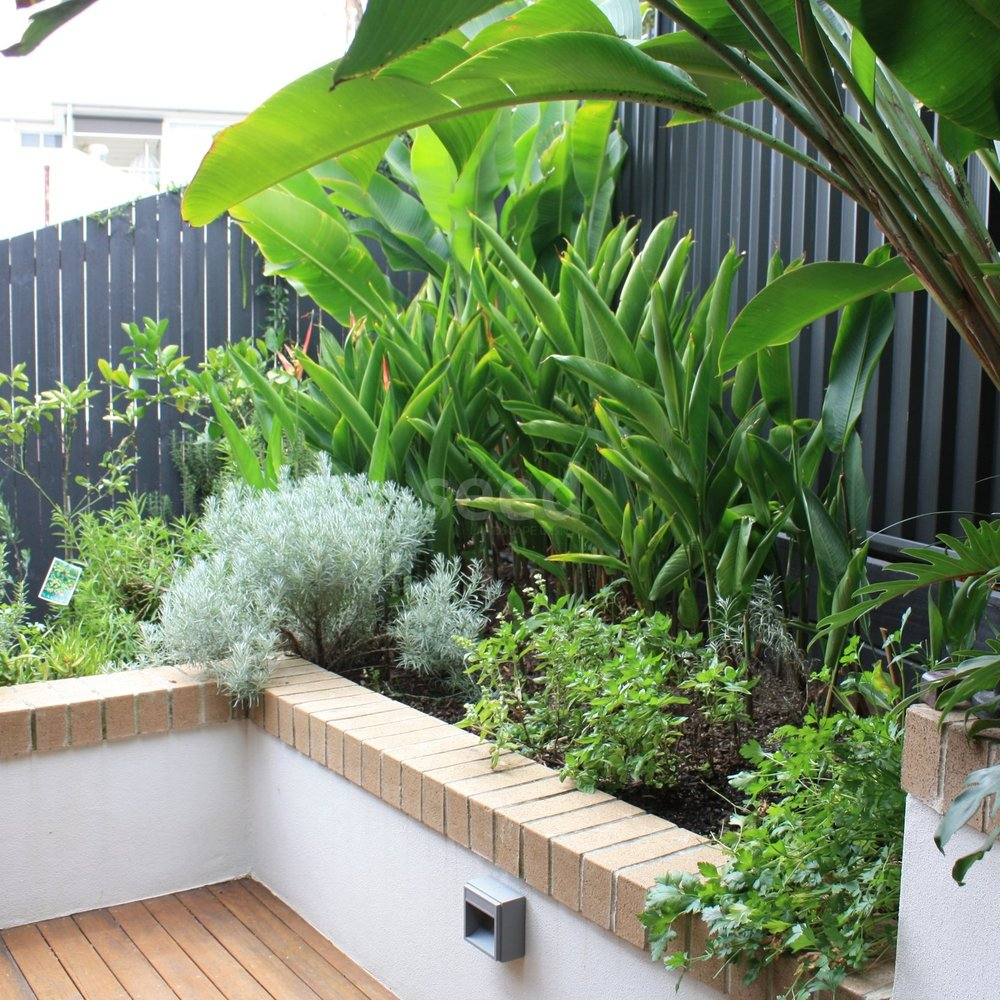 Differing levels add interest and enable the inclusion of more plant varieties within a smaller space