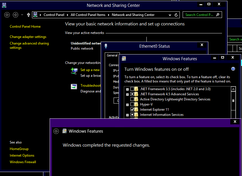 After the IP is set to static, I can go ahead and install internet information services under add or remove windows features.