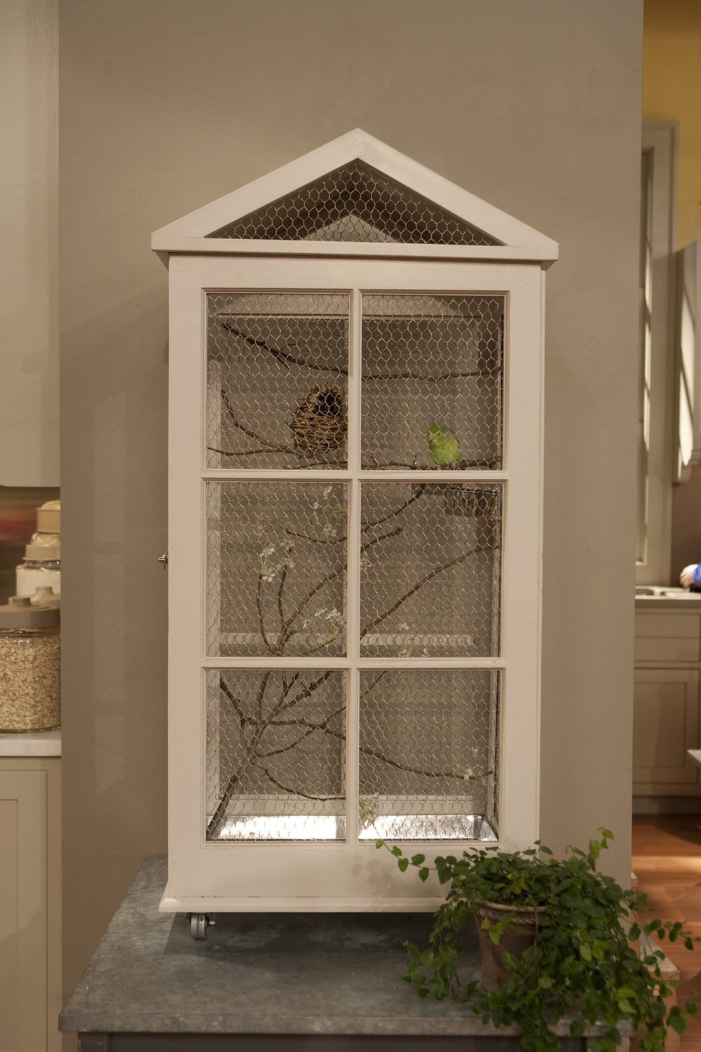 Window Frame Birdcage