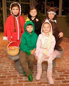 Hoodie Costumes