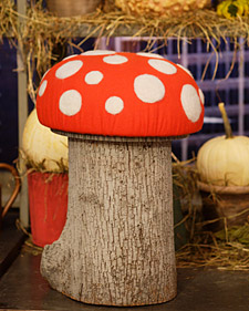 Tree Trunk Toadstools