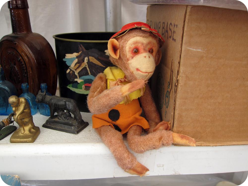 old monkey.jpg