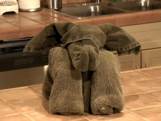 towel elephant, hotel, resort, photo.jpg