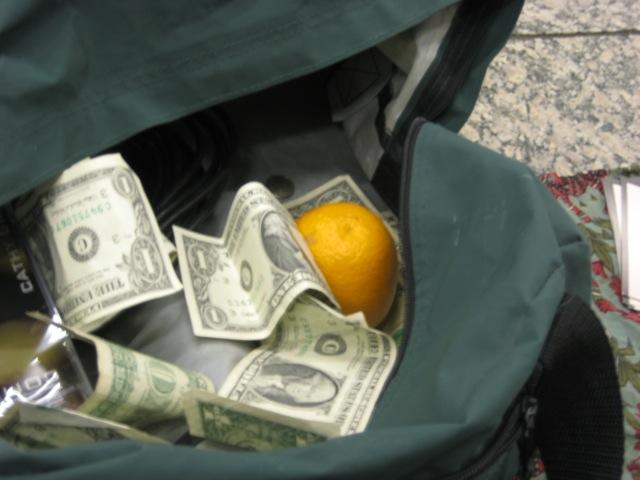 orange tip.jpg