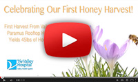 Valley Hospital Video: Bee Bold Honey Harvest
