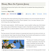 Honey Bees Go Uptown Jersey, American Agriculturist