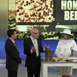 Beebold Apiaries on set with Katie Couric!