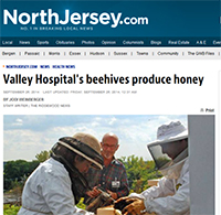 Valley Hospital's beehives produce honey