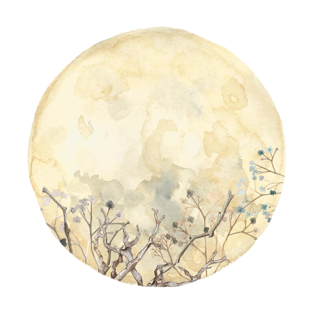 full moon with flowers and branches.png